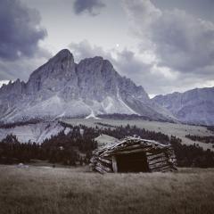 Scan4000PPI-Kodak100VS-Hasselblad-8 - Duotone + Effetto